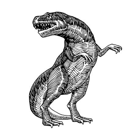 prehistoric reptile of the Jurassic period, giant carnivorous dinosaur, tyrannosaurus, raptor, vector illustration with black ink lines isolated on a white background in a hand drawn style Illusztráció