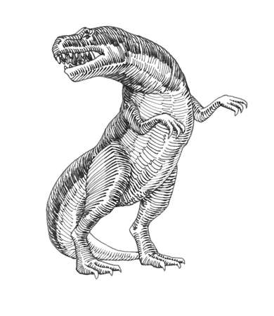prehistoric reptile of the Jurassic period, giant carnivorous dinosaur, tyrannosaurus, raptor, illustration with black ink lines isolated on a white background in a hand drawn style Stock fotó