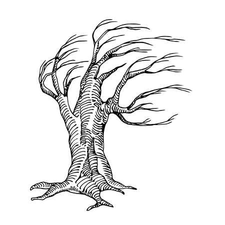 scary dry dead tree with lifeless branches the mystical character of Halloween holiday, vector illustration with black contour lines isolated on a white background in a doodle & hand drawn style