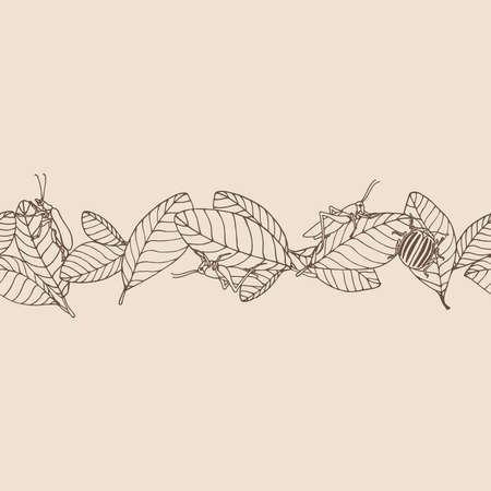 horizontal seamless pattern of decorative leaves & pest insects, grasshopper, locust, colorado beetle, color vector illustration with sepia contour lines on a milky background in a hand drawn style
