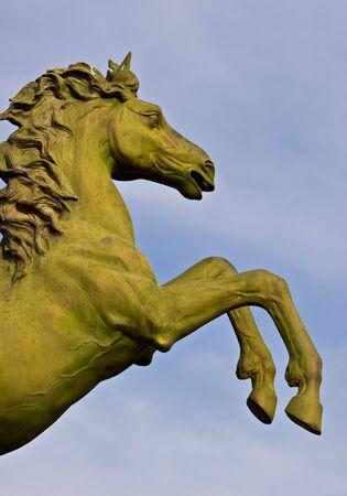 bronze statue of horse Stock Photo - 5821196