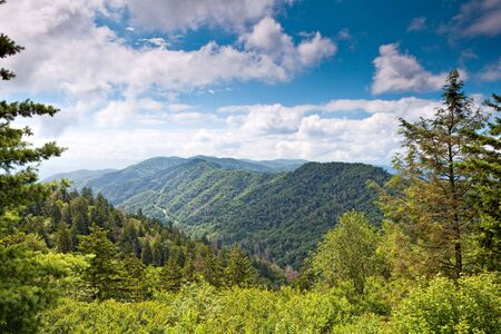 Mountain valley at sunny day.  Great Smoky Mountain National Park, Tennessee, USA Stock Photo - 7516974
