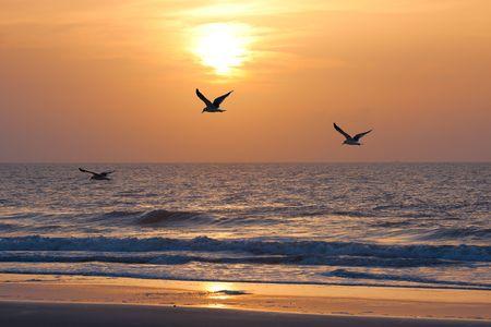 Sunset on the atkantic ocean. Florida, USA 스톡 콘텐츠