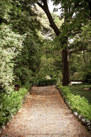 Pathway in a green garden Stock Photo - 8238122