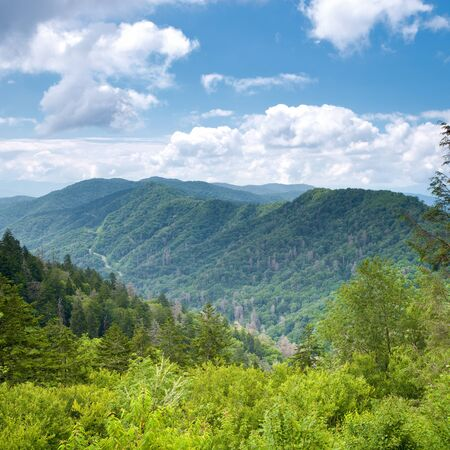 Mountain valley at sunny day. Great Smoky Mountains, Tennessee, USA