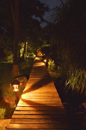 evening garden with pathway