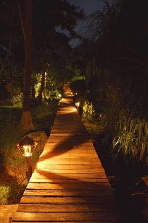 garden lamp: evening garden with pathway