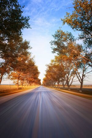 beetwen: Movig fast at country road beetwen fall trees