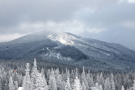 Winter mountain valley landscape. Great Smoky Mountain National Park, Tennessee, USA photo