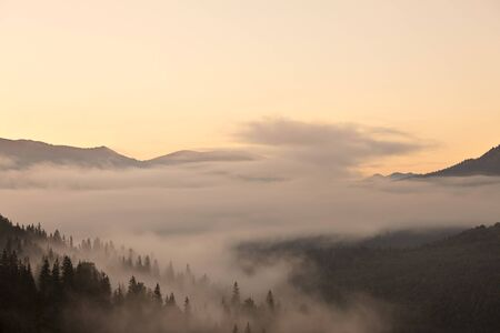 Mistige ochtend bergdal. Great Smoky Mountain National Park, Tennessee, USA