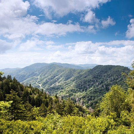 Mountain Valley op zonnige dagen Great Smoky Mountains, Tennessee, USA