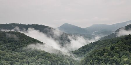 Fog and cloud mountain valley landscape  Great Smoky Mountain National Park, Tennessee, USA photo