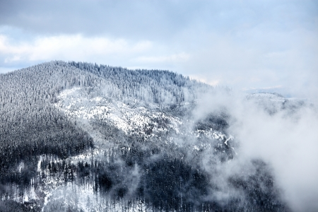 Winter in het Great Smoky Mountain National Park, Tennessee, USA