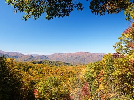 Herfst kleuren bossen in de Smoky Mountains National Park, Tennessee, USA