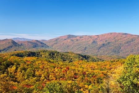 Herfst kleuren bossen in de Smoky Mountains National Park, Tennessee, USA