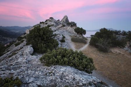 rocky mountain juniper: Sunset over Novy Svet village and recreation area  Crimea, Ukraine