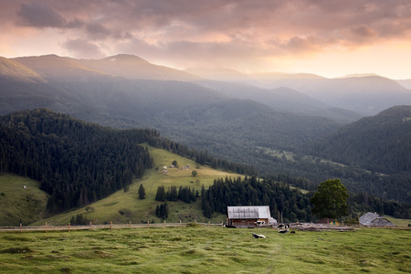 Carpathian mountains rural landscape. Carpathian mountains, Ukraine