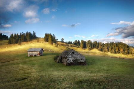 carpathian: Carpathian mountain sunny hills. Carpathian mountains, Ukraine