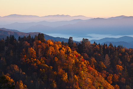 blue ridge mountains: Sunrise at Smoky Mountains. Great Smoky Mountains National Park, USA Stock Photo