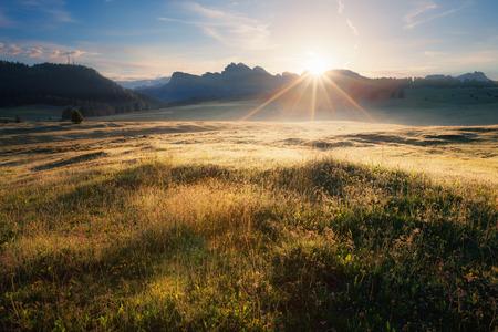 dolomites: Alpine meadow sunrise, Dolomites Alps, Italy Stock Photo
