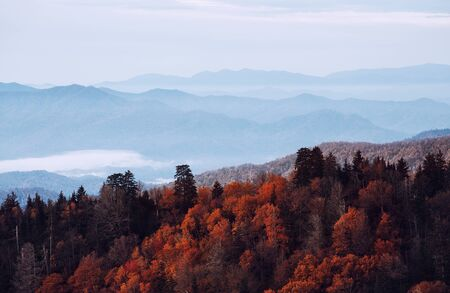 smoky: Great Smoky Mountains National Park, Tennessee, USA