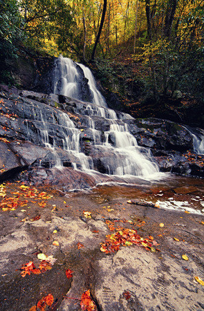 laurel mountain: Laurel waterfall. Great Smoky Mountains National Park, Tennessee, USA