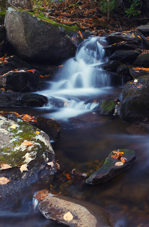 smoky mountains: Mountain creek. Great Smoky Mountains National Park, Tennessee, USA