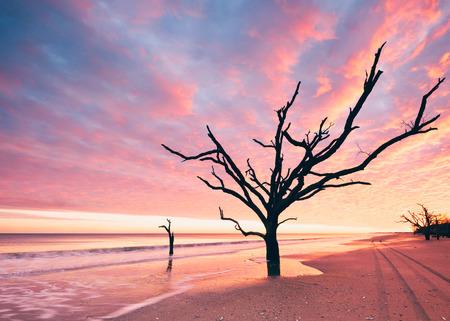 Botany Bay strand bij bewolkte zonsondergang, Edisto, USA