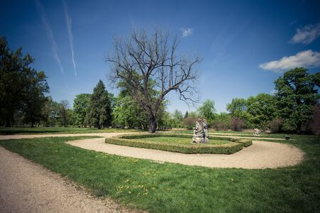 austerlitz: Old park at sunny day