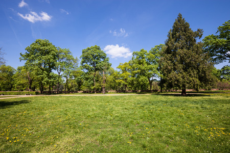 austerlitz: Green park at sunny day