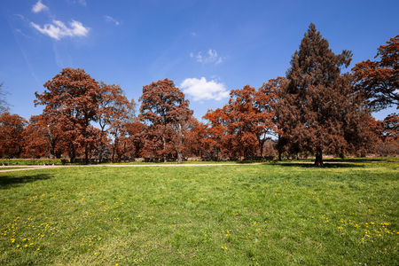austerlitz: Fall colors park at sunny day
