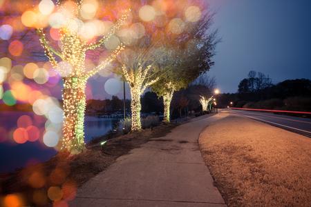 Kerst versierde bomen bij het meer