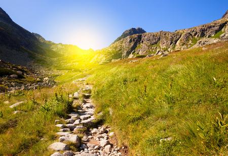 Bergweg bij zonnige dag Stockfoto