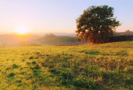 Countryside landscape at beautiful sunrise. Tuscany, Italy, Europe.