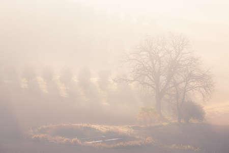 orcia: Foggy sunrise. Countryside landscape. Tuscany, Italy, Europe. Stock Photo