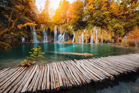 秋カラーの森で美しい滝 写真素材