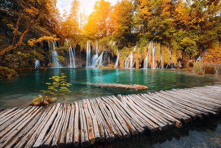 Beautiful waterfall in autumn color forest