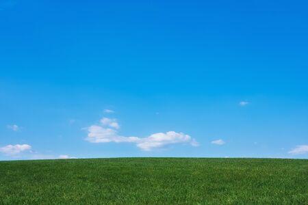 Imagen de campo de hierba verde y fondo de cielo azul brillante Foto de archivo