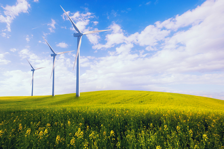 Eco green power station, wind turbines at the spring yellow field 免版税图像