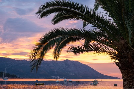 Sunrise at the sea with palm tree. Tropical resort. Sea, mountains, island and boats.