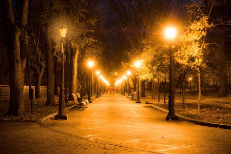 Callejón del parque de la ciudad, banco, árboles y linternas. Paisaje del parque de la ciudad de noche