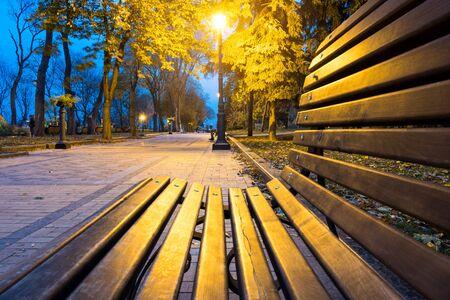 City park alley, bench, trees and lanterns. Night city park landscape