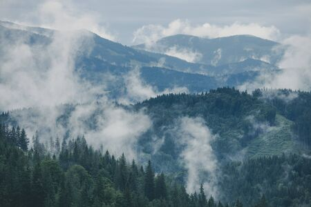 Misty landscape of mountain and forest. Summer foggy and cloudy morning. Smoky mountains park, USA Stockfoto