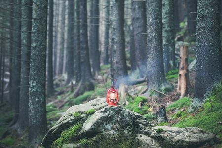hiking rocky path trail and red vintage lantern in foggy misty moody woodland