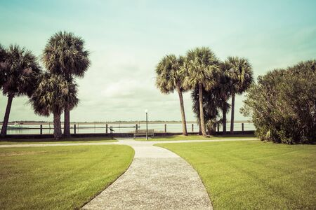 Green spring park with fresh grass, trees, palms. Beautiful nature background Banque d'images - 144174196