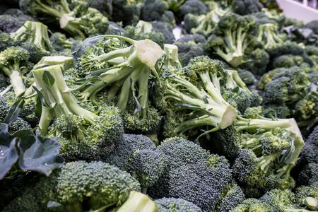 Freshly harvested broccoli on display at the farmers market