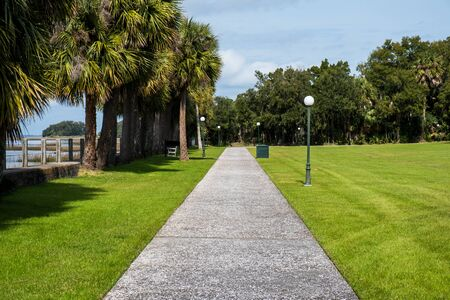 Green spring park with fresh grass, trees, palms. Beautiful nature background Banque d'images - 144176612