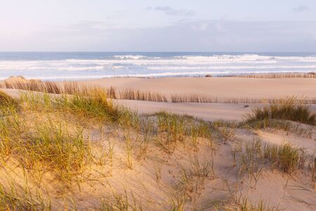 Sand dunes and ocean at sunny morning. Beautiful summer landscape with ocean view Stock Photo