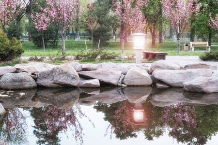 beautiful japanese green park with pond in summer time 版權商用圖片