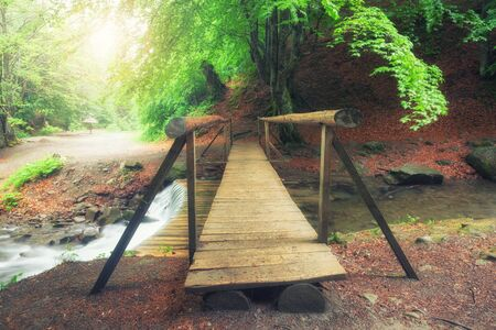 A picturesque wooden bridge across a stream in the middle of a deciduous green summer forest. Crossing a small river. Spring season.
